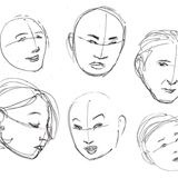 Basics of the Face