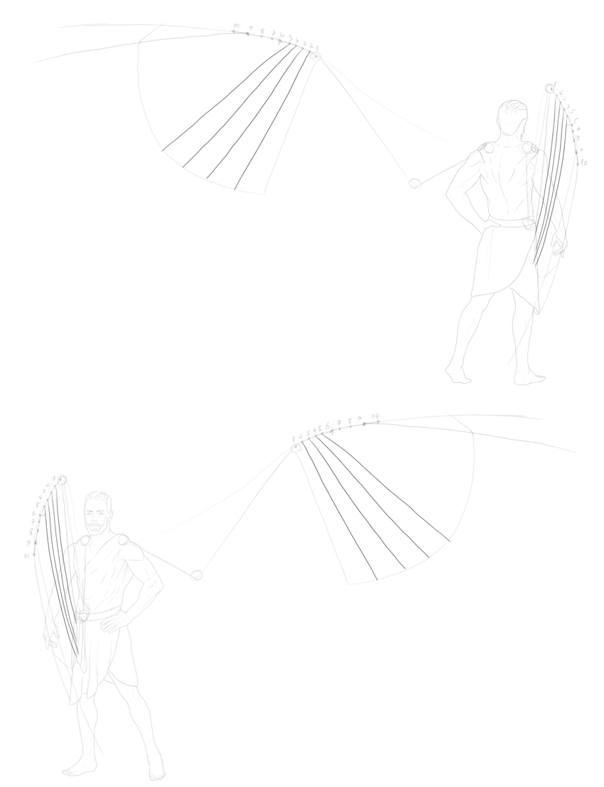 first five primary feathers
