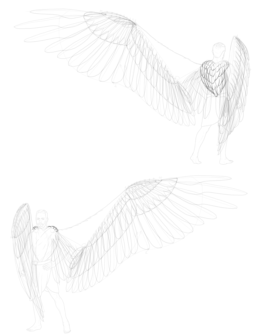 mantle feathers