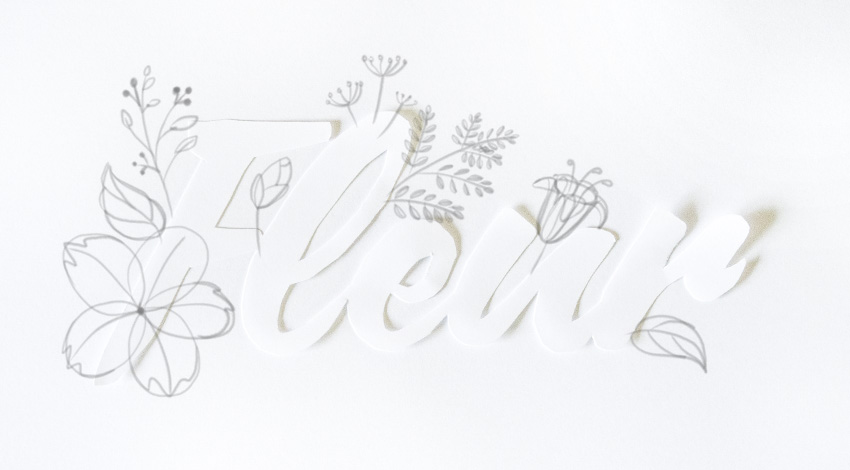 draw flower  stamens