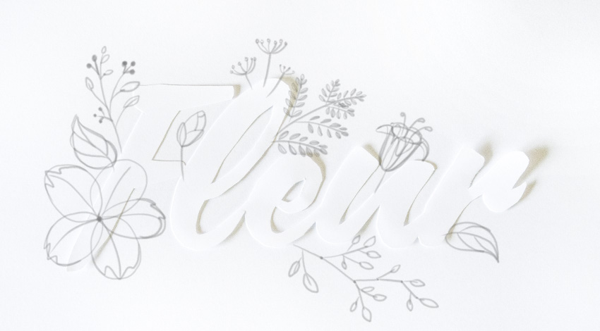 draw a sprig with leaves