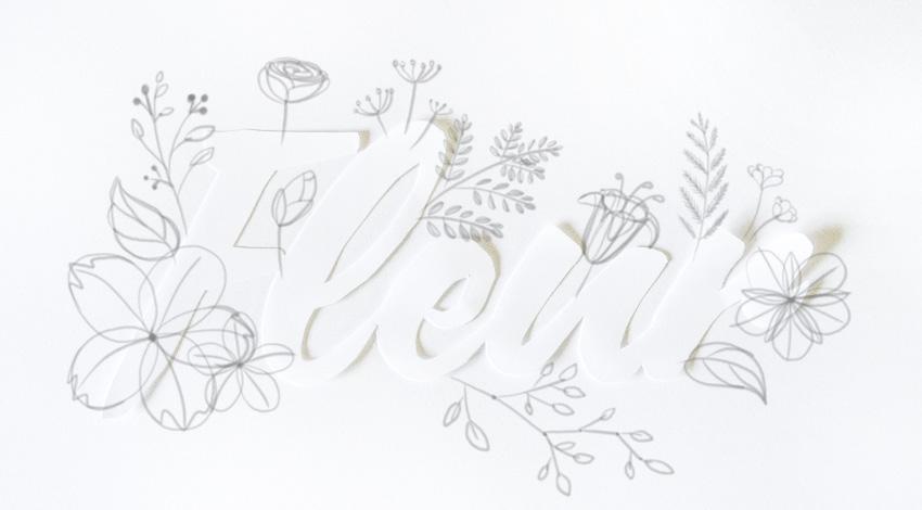 draw the petals