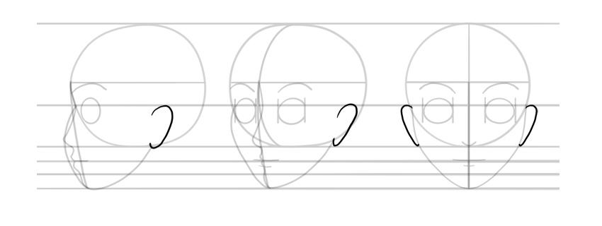 manga ears side view