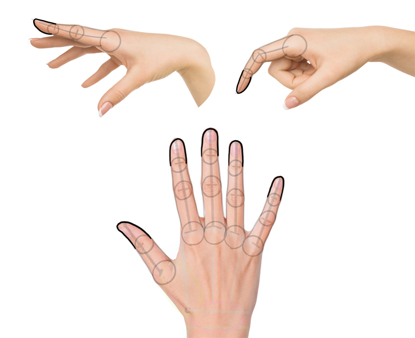 how to draw finger tips