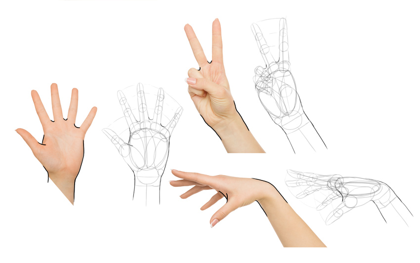 finish details of hand