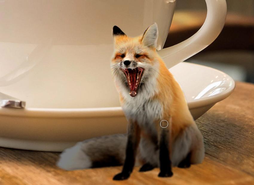 add shadows to fox body