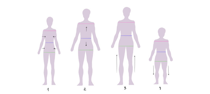 body shape variation