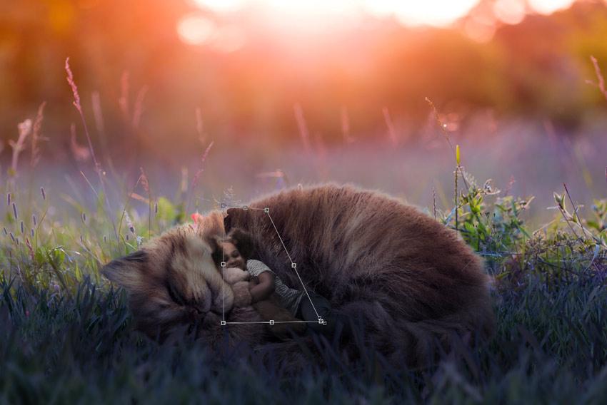 resize fur