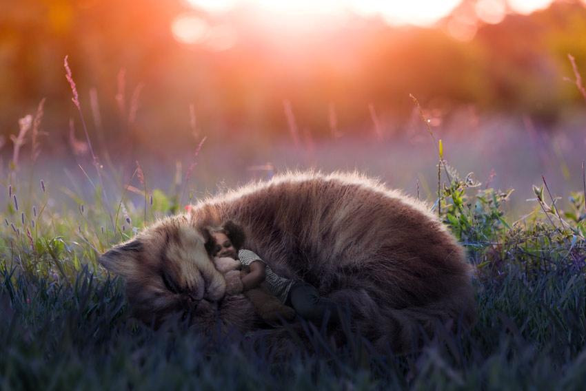 brighten the fur
