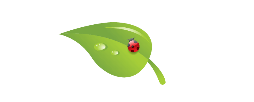 add ladybug to leaf