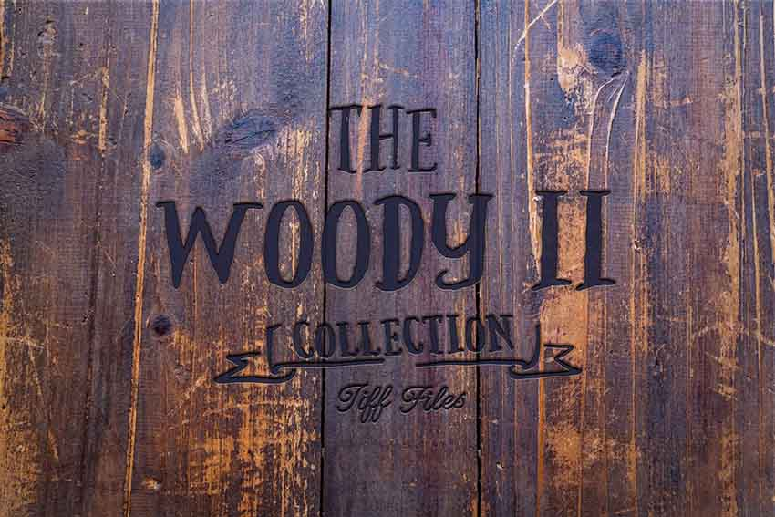 101 wood texture woody collection