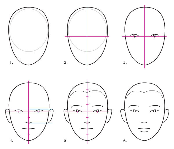 It is helpful to know that the width of a face is generally five eyes or a little less the distance between the eyes is equal to one eye