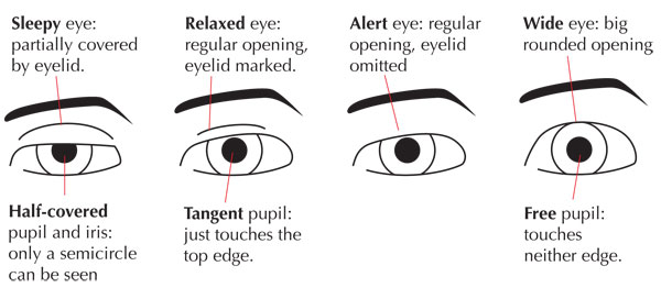 Relaxed facial expressions eyes