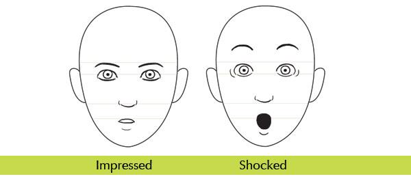 human anatomy fundamentals mastering facial expressions
