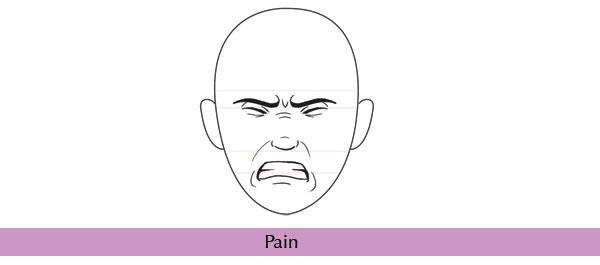 Fundamentos de la Anatomía Humana: Dominando las Expresiones Faciales