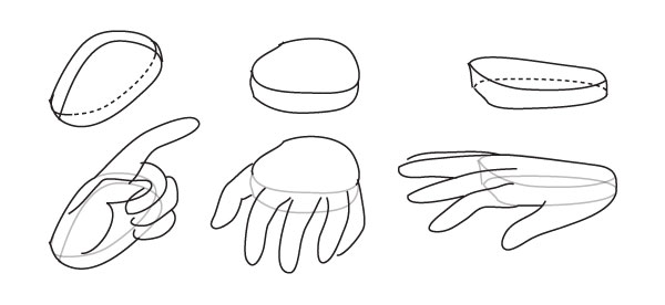 Basics of the hand