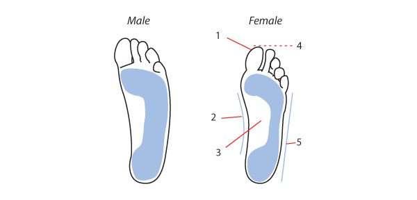 Male and female feet