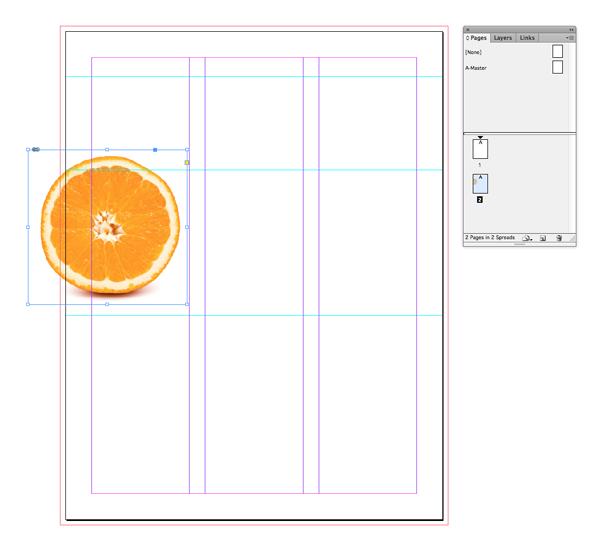 half orange image placed