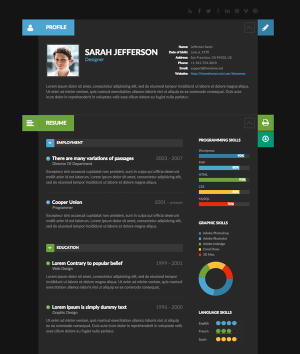 Resume Website Theme   Example Profile And Resume Layout. Website Portfolio  Resume One Page