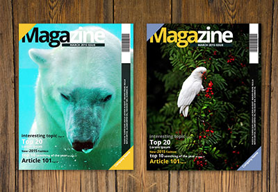 How to Create a Simple Magazine Template in Adobe InDesign