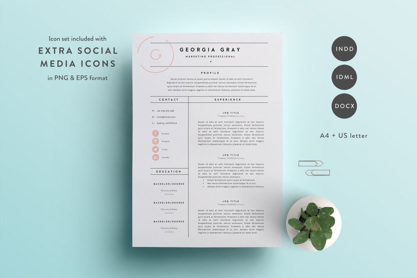 clean resume clean and minimal resume template