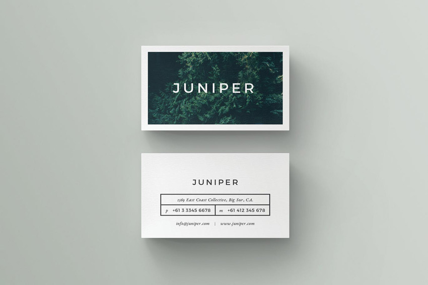 25 indesign templates every designer should own for Juniper business card