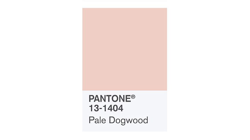 How to Create a Millennial Pink Stationery Set in Adobe InDesign