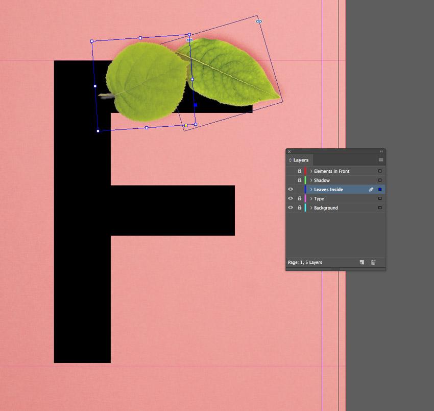 placed leaf image