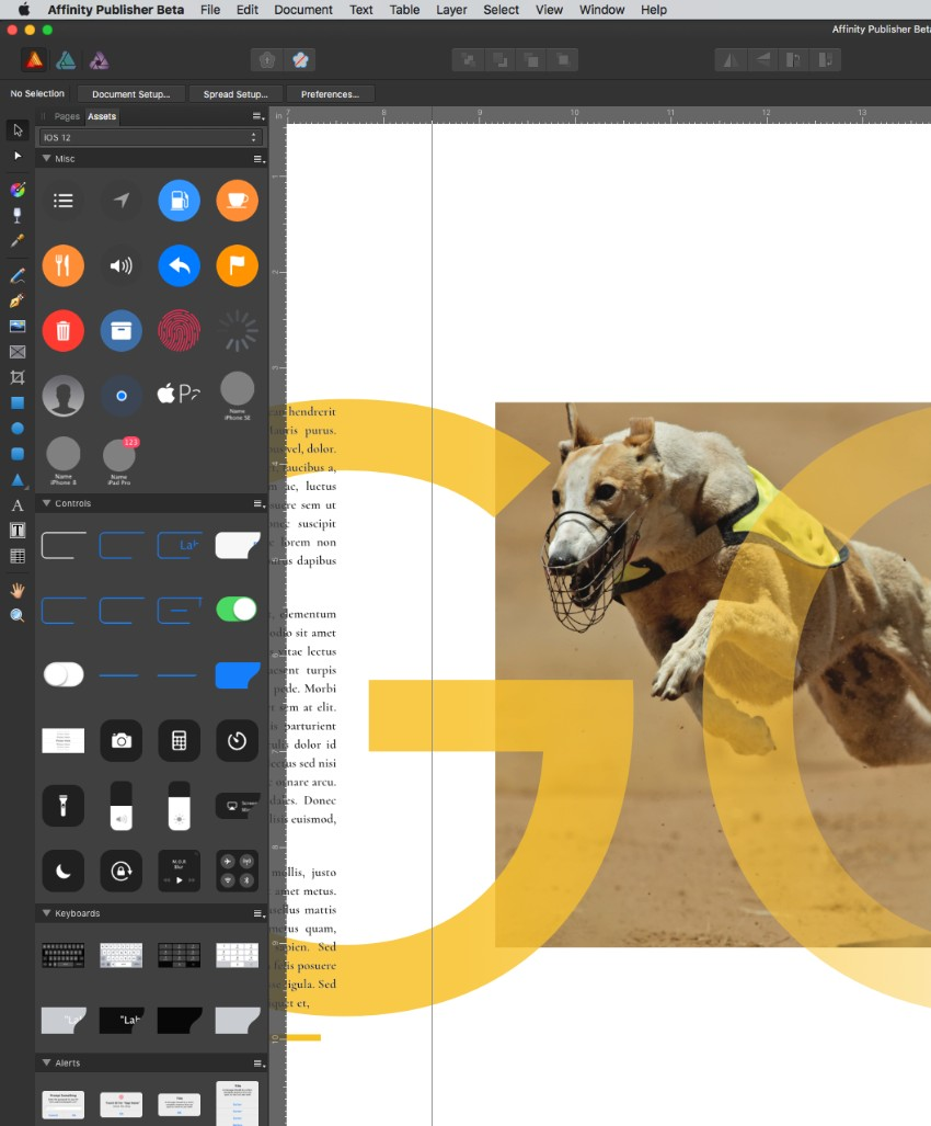affinity publisher your guide to indesign s new rival