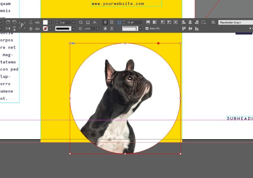 auto-fit image
