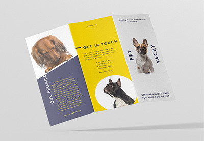 pet shop brochure designers near me