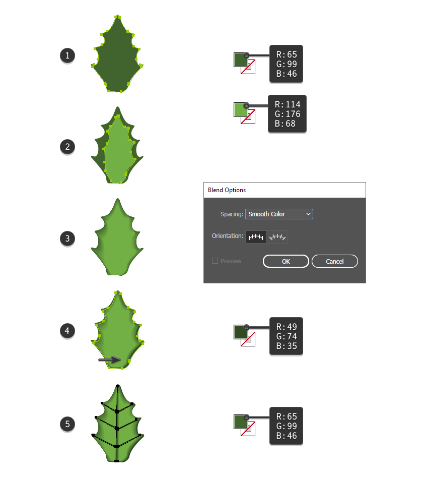 how to create the holly leaf in Adobe Illustrator
