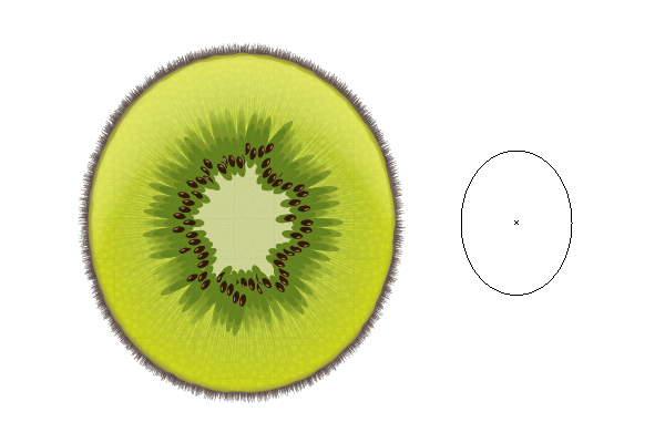 Kiwi One Shape Design
