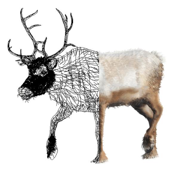 Reindeer Gradient Mesh