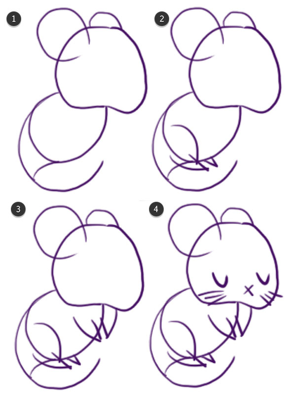 Drawing the rats limbs tail and face