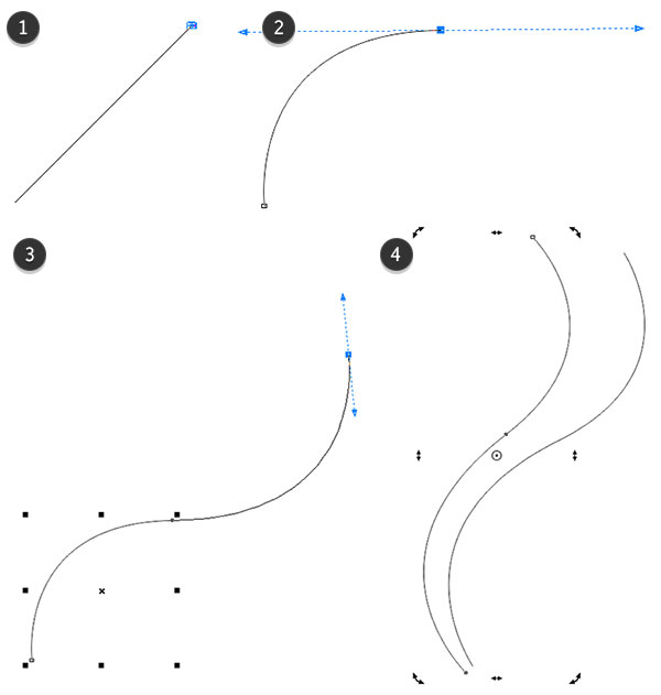 Use the Bzier tool to draw curved lines