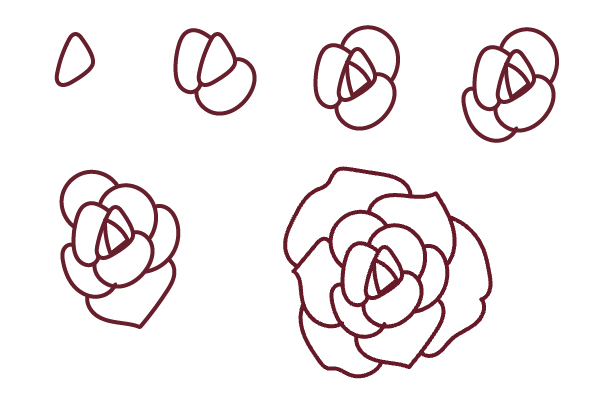 Draw a rose in a series of six steps