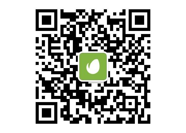Follow Envato on WeChat