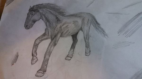 User Madeline commented with her result from a horse drawing tutorial by Monika Zagrobelna