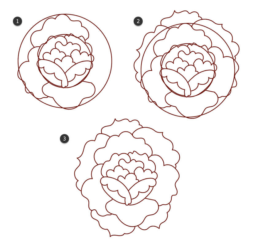 Draw outer petals and delete the guide circles in your design