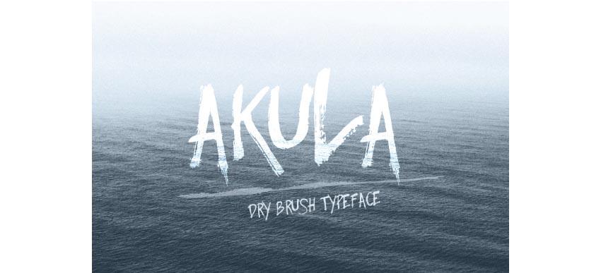 Akula- Dry Brush Font