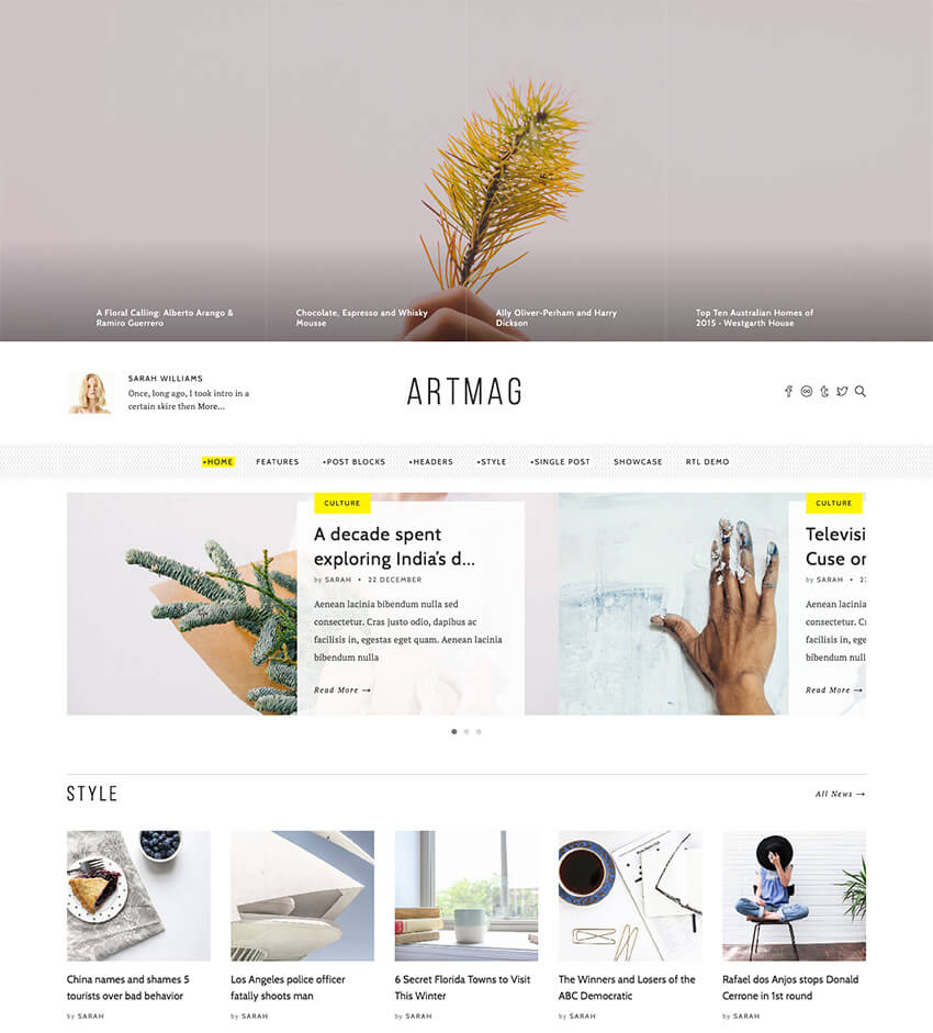 Artmag Clean WordPress Blog and Magazine Theme Design