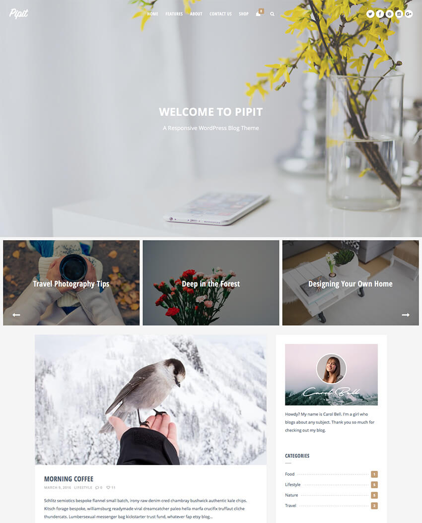 Pippit -Responsive Personal WordPress Blog Theme 2017