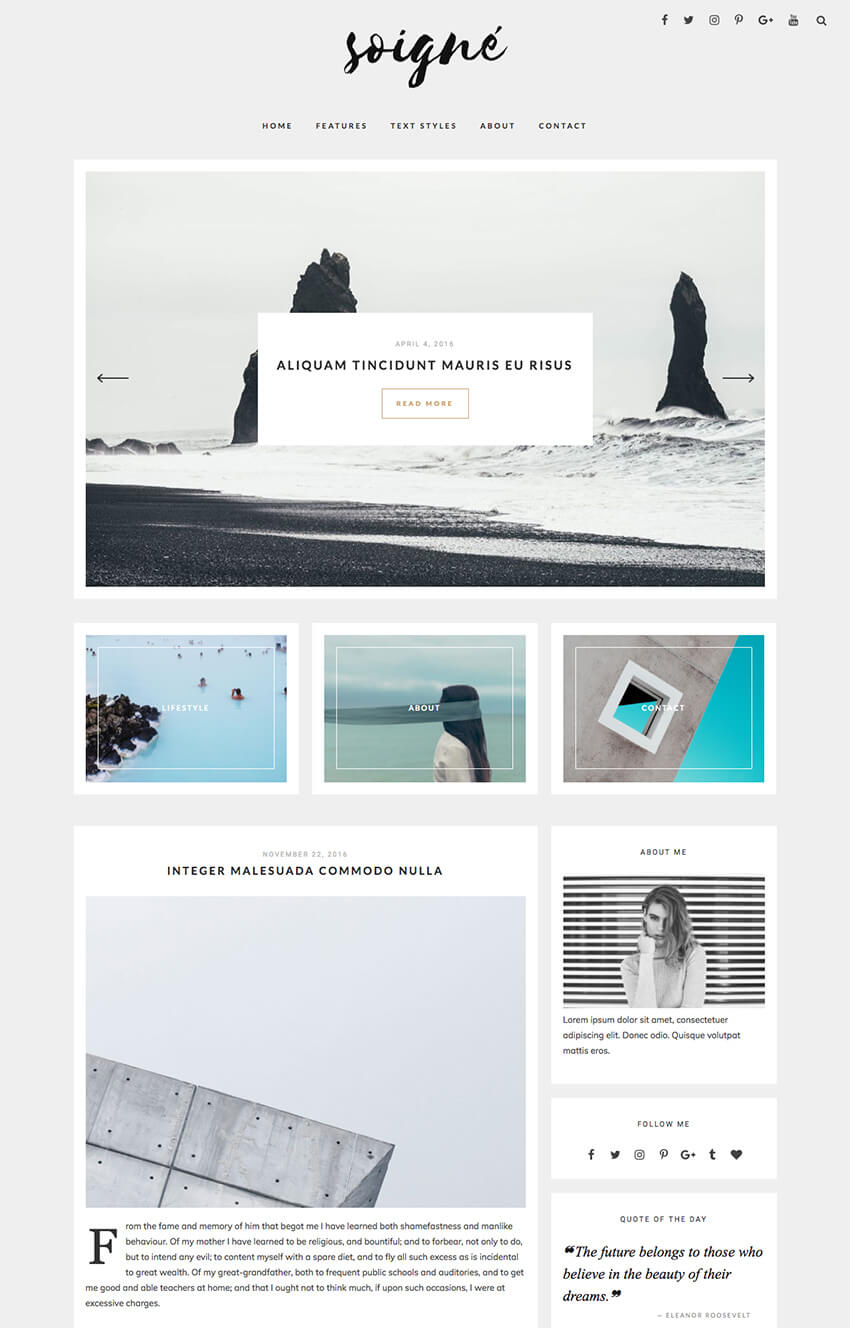Soigne Minimal Personal Blog WordPress Theme 2017