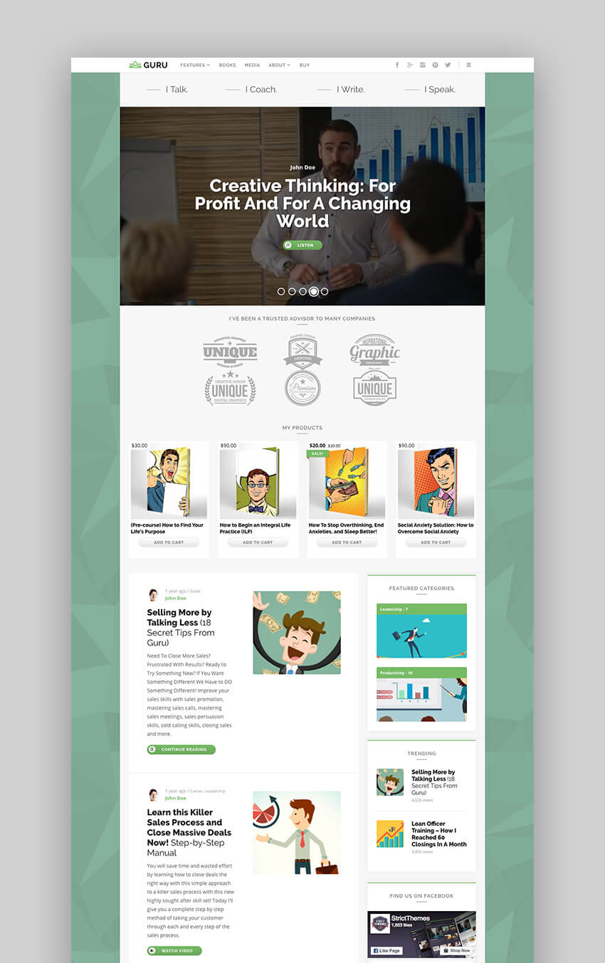 Guru Blog professional coaching WordPress theme