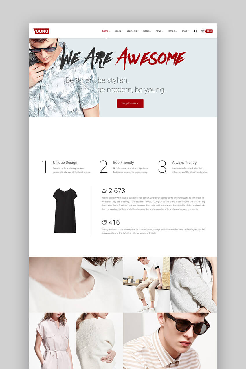 Young fashion portfolio WordPress website theme design