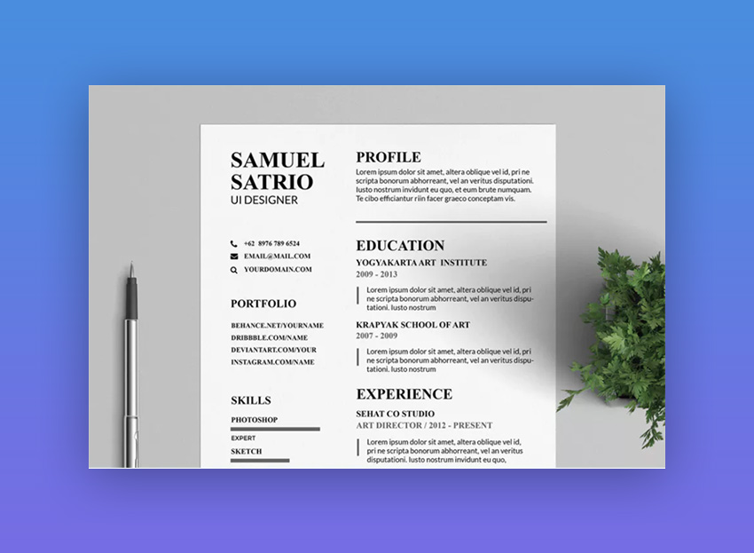 Pros Resume  CV Template