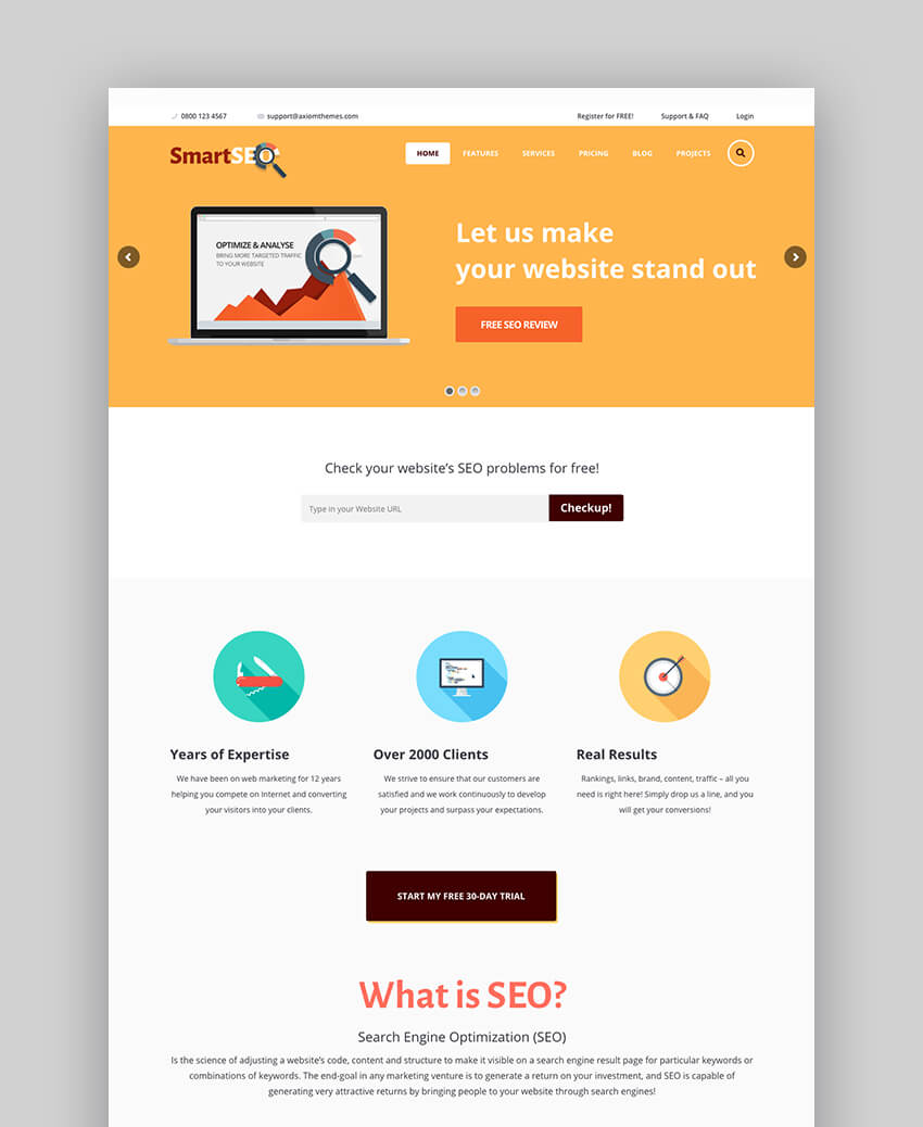 SmartSEO WordPress theme