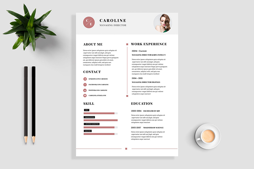 Minimal and Professional Resume Color Scheme