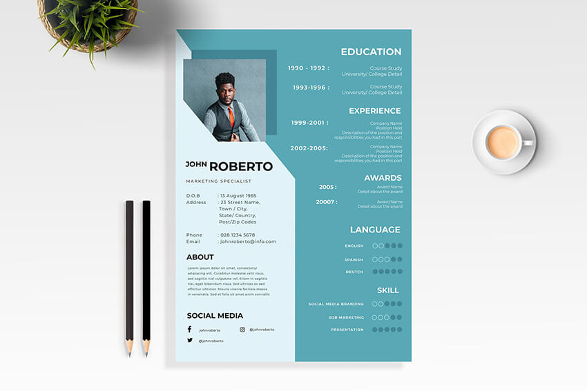 Resume CV Template Contact Details Example